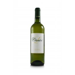 Vernier White Wine Penedes - Spain