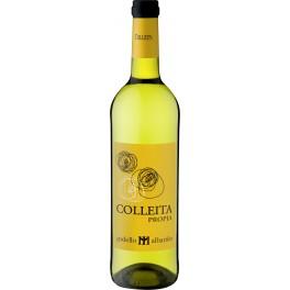 Albariño Colleita Propia Weißwein - Spanien