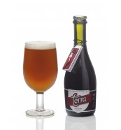Cerveza Terra Tostada