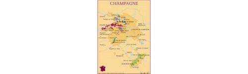 Champagne - Francia