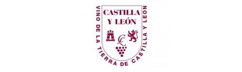 Vinos Tierra Castilla y Leon - Spanien